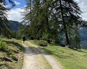 Trail-Running Scuol